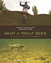 What A Trout Sees  - Out of Print