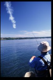 Cowlitz River Summer Steelhead